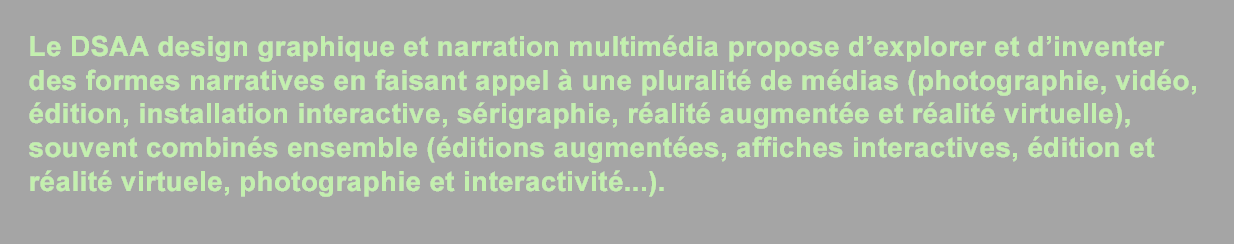 DSAA design graphique et narration multimedia - description de la formation